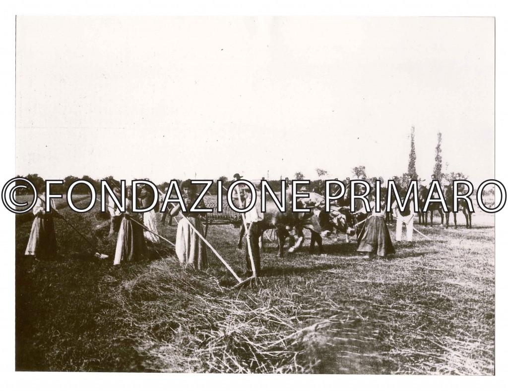 Sciopero-1907-La-cavalleria-protegge-i-crumiri-nei-campi